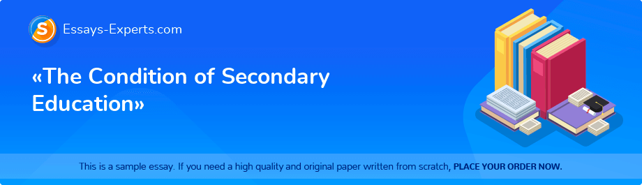 Free Essay Sample «The Condition of Secondary Education»