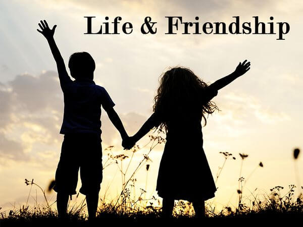 Essay about Life and Friendship