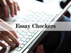 Essay Checkers